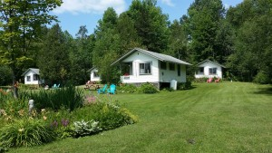 Green Acres Cabins lawn and flowerbeds