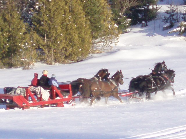 Winter Horse Blankets >> Horse Drawn Sleigh Rides in the Northeast Kingdom of Vermont   Barton Area Chamber of Commerce